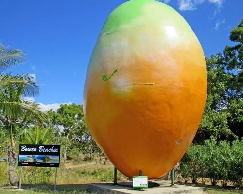 bowen-big-mango